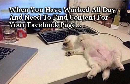 facebook-overload